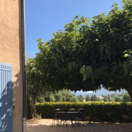 Une magnifique piscine de 15 m x 6 - Location de vacances - Vaison-la-Romaine
