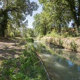 accès direct au Canal de Carpentras pour ballades - Location de vacances - Aubignan
