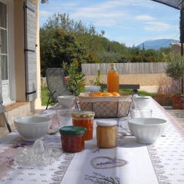 vue sur le ventoux - Location de vacances - Vaison-la-Romaine