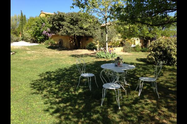 jardin arboré d'un hectare  - Chambre d'hôtes - Gargas