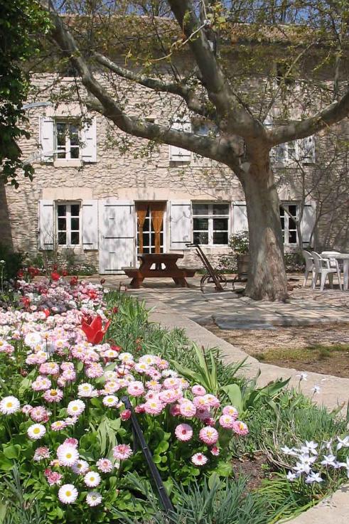 Notre Mas tout en fleurs :) - Chambre d'hôtes - Châteauneuf-de-Gadagne