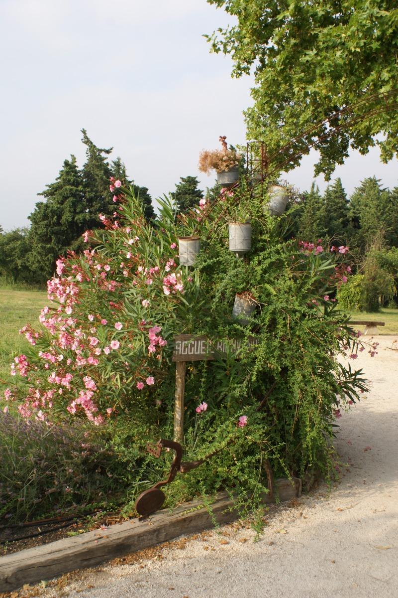 Bienvenue chez nous ! - Chambre d'hôtes - Châteauneuf-de-Gadagne