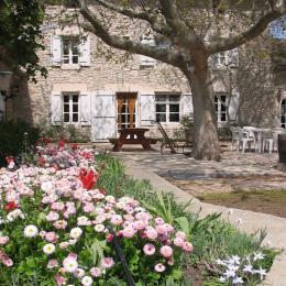 Notre mas fleuri :) - Chambre d'hôtes - Châteauneuf-de-Gadagne