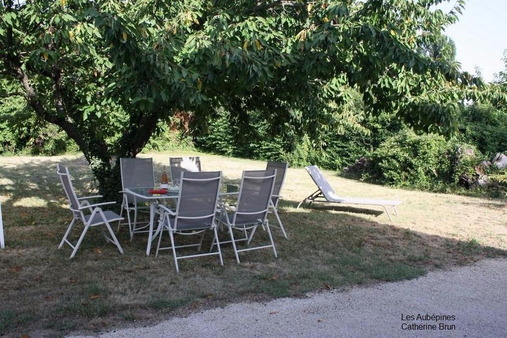Jardin : Apéro à l'ombre du cerisier... - Location de vacances - Jonquières