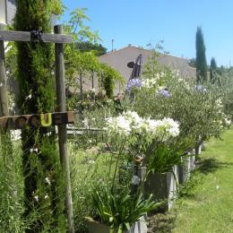 - Location de vacances - Aubignan