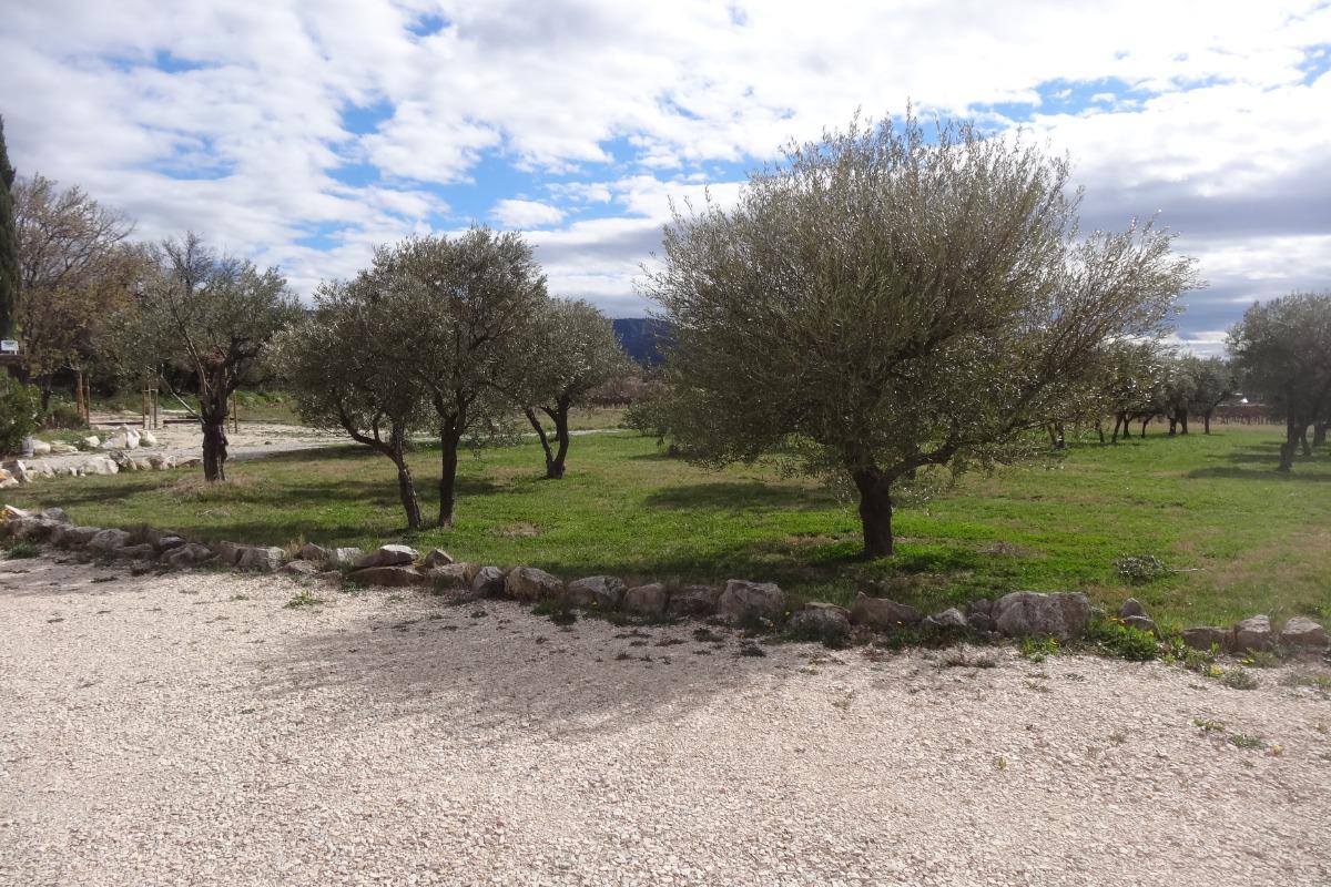 Les Gîtes de l'Oliveraie L'Olivière, Location vacances à