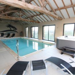 vue piscine et jacuzzi intérieur - Location de vacances - Chambretaud