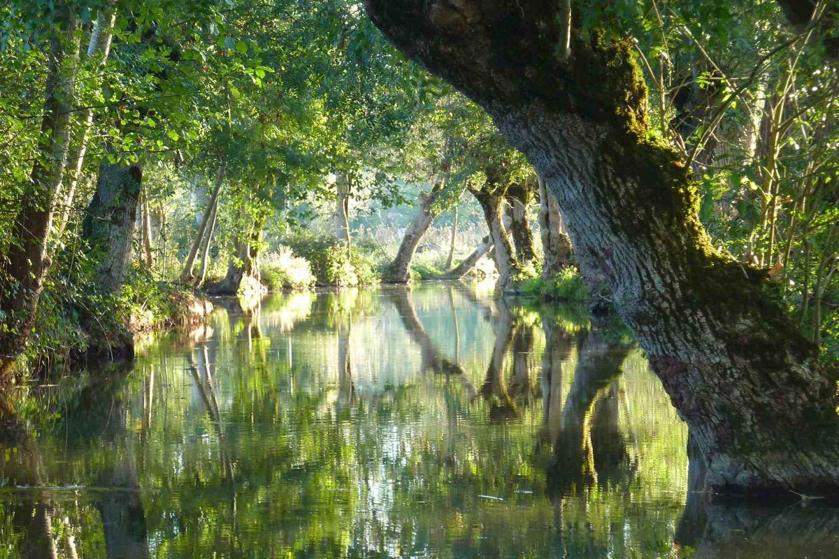 Gite de charme avec piscine chauff e en marais poitevin for Camping marais poitevin avec piscine