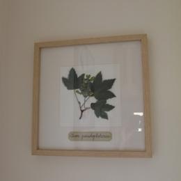 - Chambre d'hôtes - Les Herbiers