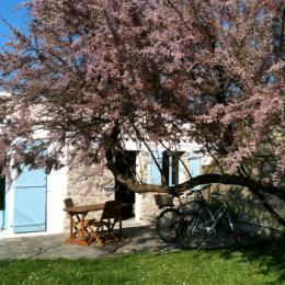 jardinbis - Location de vacances - Noirmoutier en l'Île