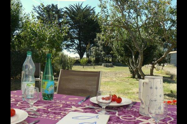 La terrasse et le jardin, sans vis à vis, plein sud - Location de vacances - Noirmoutier en l'Île