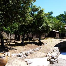 Jardin arrière villa - Location de vacances - La Tranche sur Mer