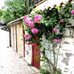 Terrasse - Location de vacances - Château Guibert