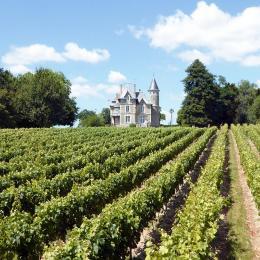 Domaine du château de la Brédurière - Location de vacances - Moutiers sur le Lay