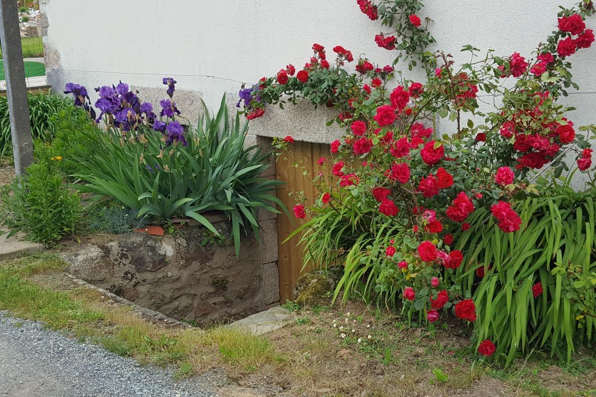 extérieur - Location de vacances - Sèvremont