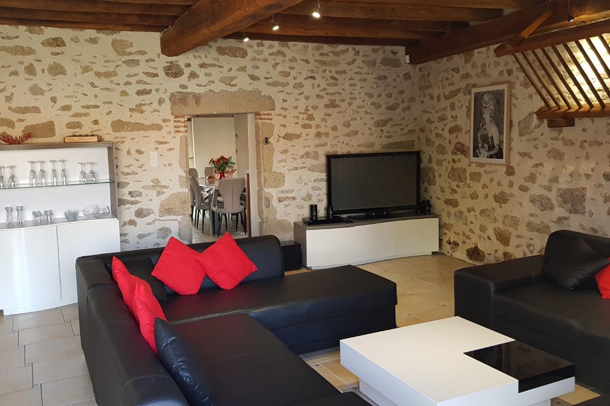 salon (2 canapés 7 places, TV, home cinéma, lecteur DVD blu ray...) - Location de vacances - Saint Georges de Pointindoux