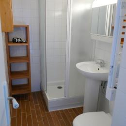 Salle d'eau avec wc - Location de vacances - La Barre de Monts - Fromentine