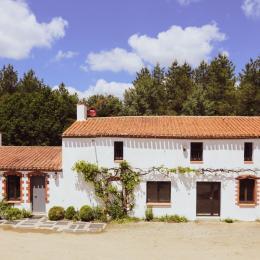 Gîte L'Appel de la Forêt - Location de vacances - Grand'Landes