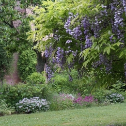 Chambre d'hôtes - Abbaye Autrey - Jardin - Chambre d'hôtes - Autrey
