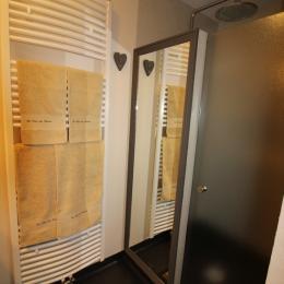 Douche salle d'eau - Chambre d'hôtes - Fresse-sur-Moselle