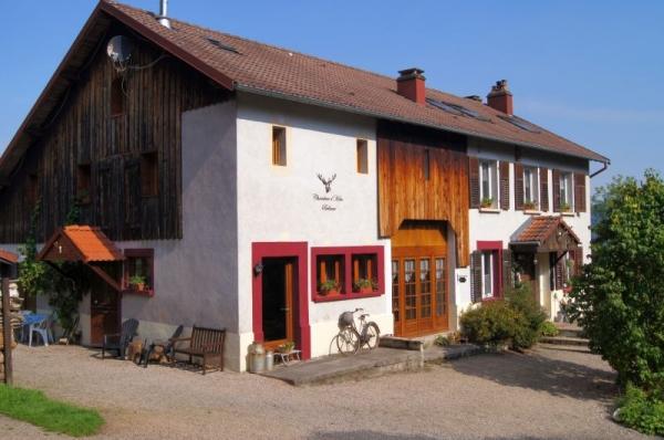 chambres dhotes Bellevue, Vosges - Chambre d'hôtes - Ban-sur-Meurthe-Clefcy