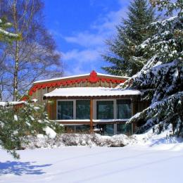 Cheminée et salon - Location de vacances - Plombières-les-Bains