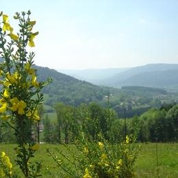 Cuisine - Location de vacances - Cleurie