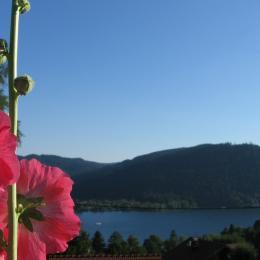 Vue Lac de Gérardmer  - Chambre d'hôtes - Gérardmer