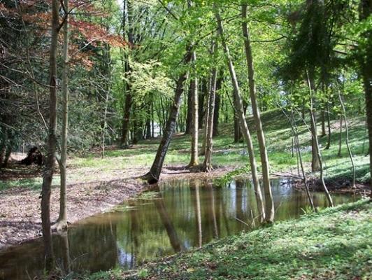 Parc 2 ha - Villa Mon Coeur - Chambre d'hôtes - Remiremont