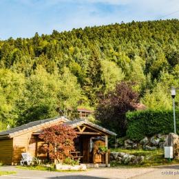 Chalet montagne 4-6 personnes accessible à personne à mobilité réduite - Location de vacances - La Bresse