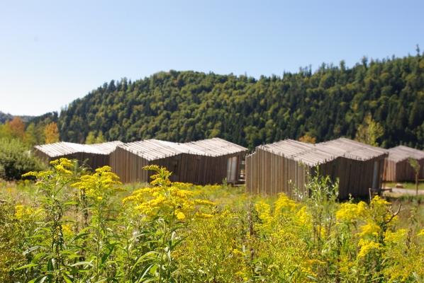 Village des Gîtes  - Location de vacances - Celles-sur-Plaine
