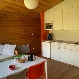 Saut l'élastique au dessus du lac Pierre Percée - Location de vacances - Celles-sur-Plaine