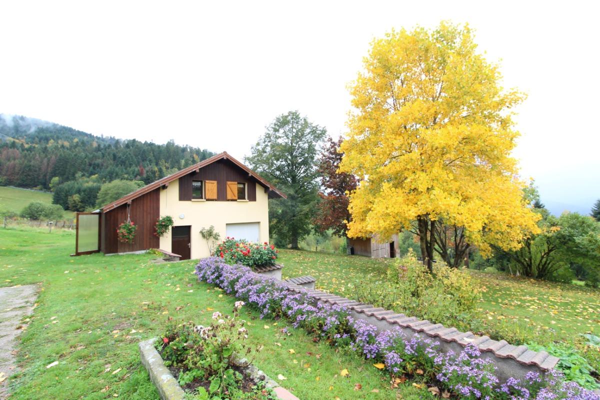 Couleurs d'automne - Location de vacances - Basse-sur-le-Rupt