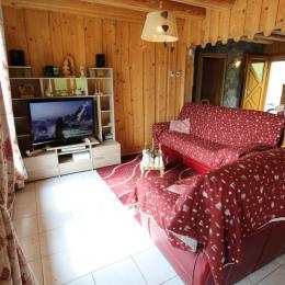 Salon RDC - Location de vacances - La Bresse