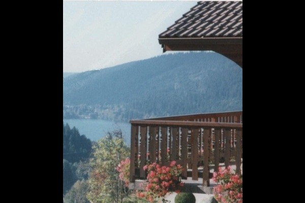 Vue la depuis la terrasse - chalet la stuga - Location de vacances - Gérardmer