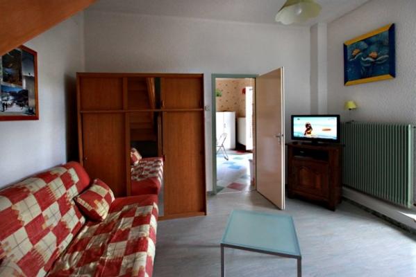 Salon avec télévision ouvert sur terrasse - Duplex Gérardmer - Location de vacances - Gérardmer