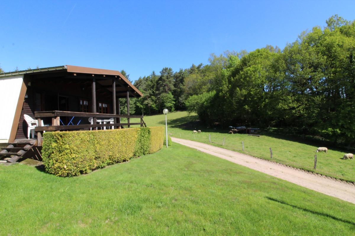 Vue depuis la terrasse sur l'étang - Chalet la Hutte Baret - Location de vacances - Raon-aux-Bois