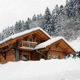 Chalet Jany à La Bresse - Sous la neige - Location de vacances - La Bresse