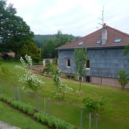 Le jardin - Location de vacances - Brouvelieures