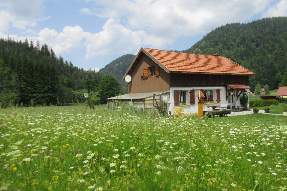 terrasse ombragée - Location de vacances - Xonrupt-Longemer