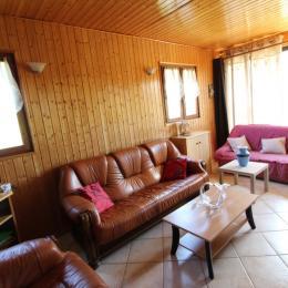 Salon télévision - Location de vacances - Girmont-Val-d'Ajol