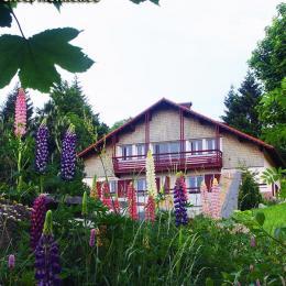 Votre chalet en pleine nature  - Location de vacances - Gérardmer