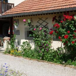 Cuisine aménagée - Location de vacances - Plombières-les-Bains