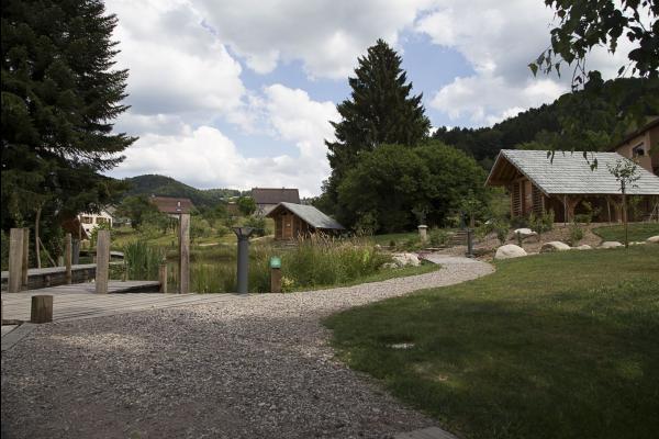 Espace toilette chello - Chambre d'hôtes - Le Val-d'Ajol
