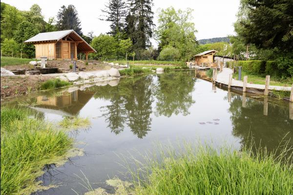 Extérieur - Chambre d'hôtes - Le Val-d'Ajol