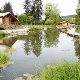 Terrasse - Chambre d'hôtes - Le Val-d'Ajol