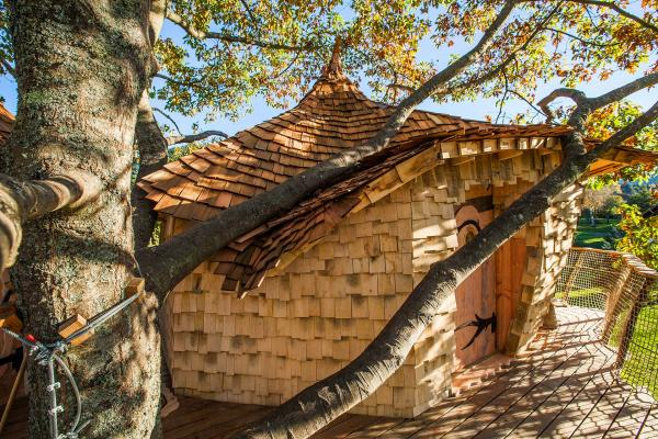 une charpentière, une noue ! - Location de vacances - Saint-Dié-des-Vosges