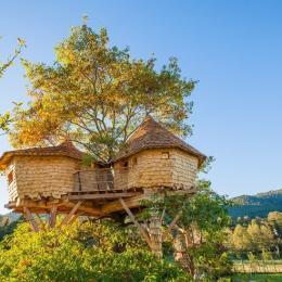 les cabanes l'été (vue est)  - Location de vacances - Saint-Dié-des-Vosges