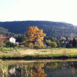 les cabanes vues de l'étang - Location de vacances - Saint-Dié-des-Vosges