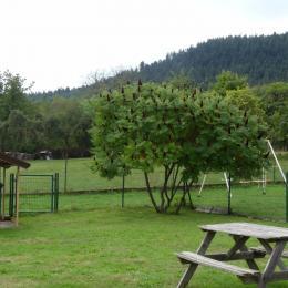 Jardin - Location de vacances - Taintrux